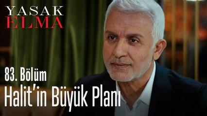 Halit'in büyük planı - Yasak Elma 83. Bölüm