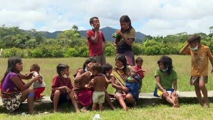Pandemia 'fora de controle' na terra Yanomami brasileira