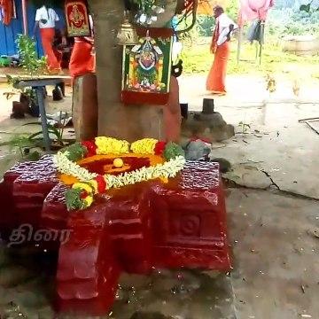 கொல்லிமலை மாணிக்க சித்தர் குரு பூஜை Kollimalai manikka sidthar