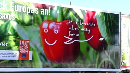 La UE promociona las bondades de las frutas y hortalizas  de invernadero por las carreteras europeas