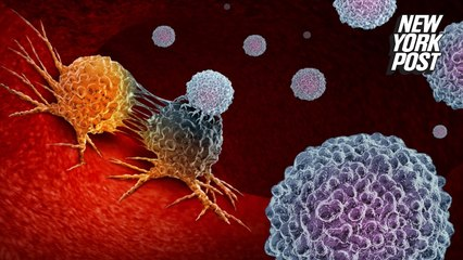 Israeli scientists: New cancer treatment like using 'tiny scissors' to hit cells
