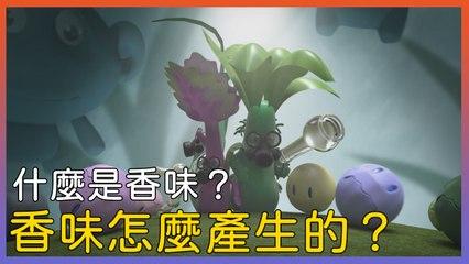 香味怎麼產生的?∣萬物滋養第二季 森林的芳香∣美食紀錄片∣紀錄片Youtube線上看