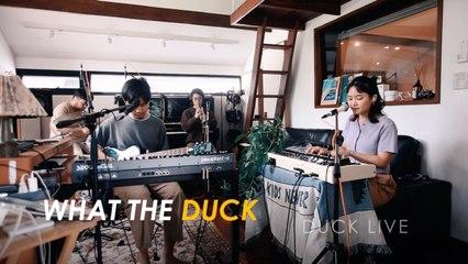 What The Duck - Duck Live 101 - ร้อน (boilling) - Plastic Plastic