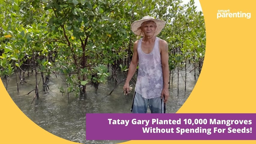 Meet The Man From Leyte Who Planted 10,000 Mangroves Without Spending For Seeds