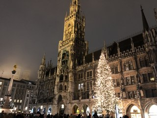 Christbaum Anzünden 2020 @ Marienplatz München - die Tanne aus Steingaden leuchtet seit 27.11.2020