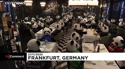 German restaurant packed with stuffed pandas in coronavirus protest
