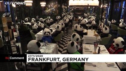 روزهای سوت و کور کرونایی؛  پانداهای خاموش مشتریان رستورانی در آلمان شدند