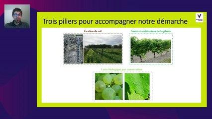 Les solutions de biocontrôle évaluées en Nouvelle Aquitaine