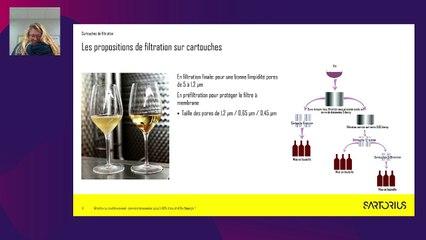 Objectif neutralité carbone - la filière vin réduit son empreinte - PARTIE 2