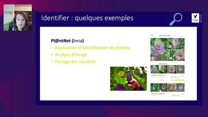 SMART Numérique en viticulture