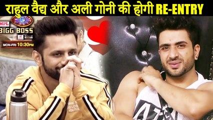 Bigg Boss 14 : Rahul Vaidya And Aly Goni RE-ENTRY In Bigg Boss House