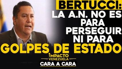 Bertucci: La A.N. no es para perseguir ni para golpes de estado   Cara a cara Impacto Venezuela