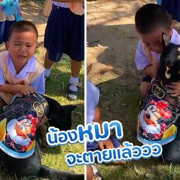 เอ็นดูน้อนน... เด็กชายร้องไห้จ้า คุณครูช่วยด้วย น้องหมาจะตายแล้ววว