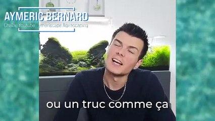 Rencontre avec Aymeric Bernard, champion de France 2015 d'aquariophilie (Partie 2)