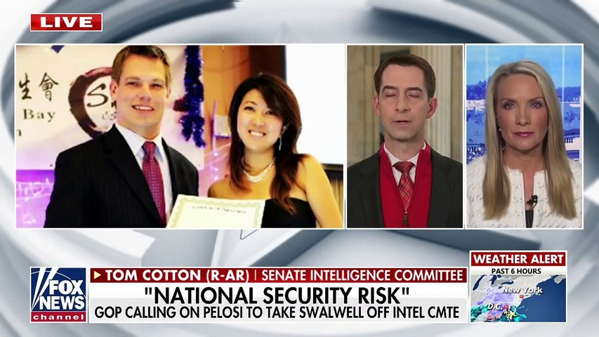 Tom Cotton calls on Biden family to 'come clean'