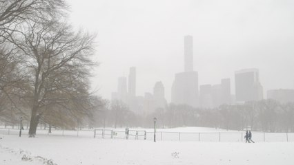 Major snowstorm drops 20cm of snow on eastern US