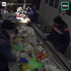 En triant les déchets, il trouve un chat enfermé dans un sac poubelle