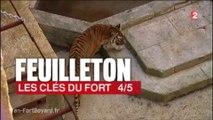 Fort Boyard 2015 - Feuilleton ''Les Clés du Fort'' : Épisode 4/5 (11/06/2015)
