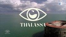 Thalassa - Reportage ''Fort Boyard, quel destin !'' du 14 mai 2018