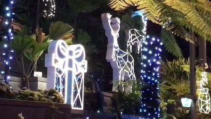 Christmas at Jewel, Singapore (2019)