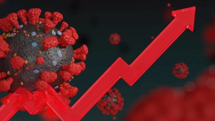 Covid-19 : une variante du virus découverte