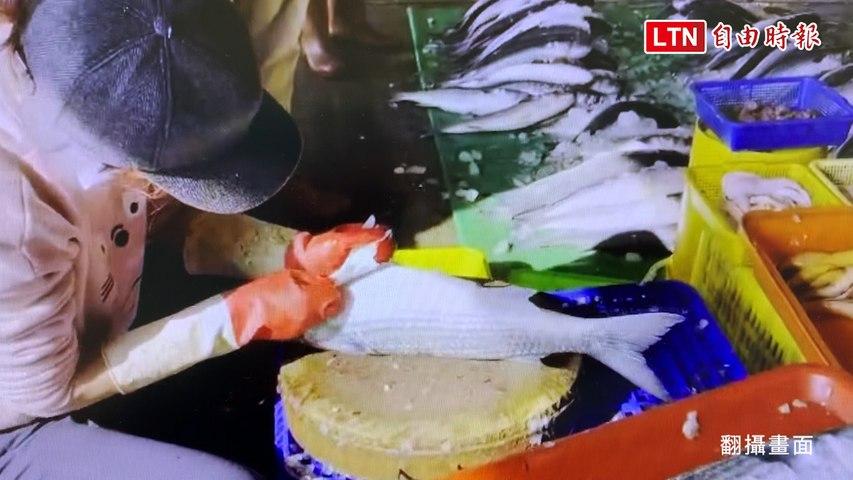 塭仔港千尾烏魚卸貨 搶購人潮爆滿