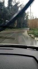 """Fiumicino, Severini: """"Via di Tragliata inondata e pericolosa"""""""