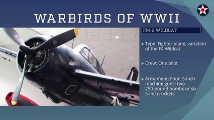 FM-2 Wildcat • United States • World War 2