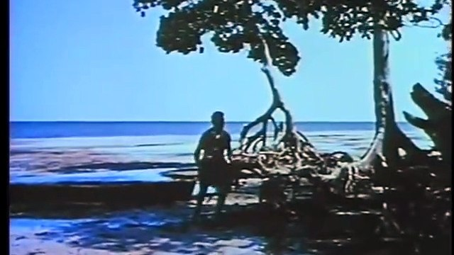 The Wild Women of Wongo (1958) [Adventure] [Comedy] part 1/2