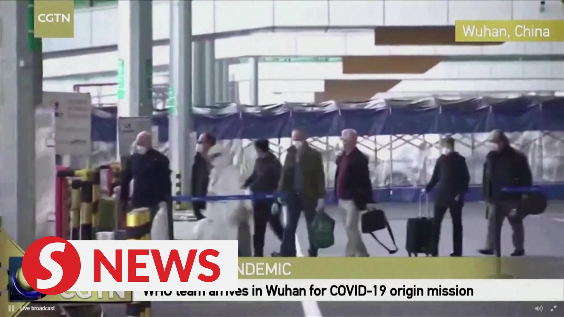 WHO coronavirus investigators arrive in Wuhan
