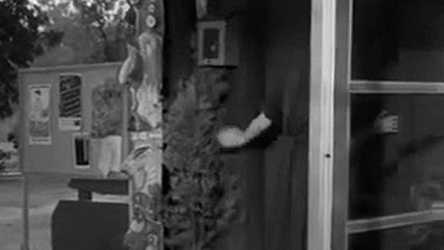 The Fugitive S03E12  Stranger in the Mirror
