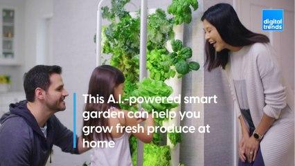 Gardyn: The A.I.-powered smart garden