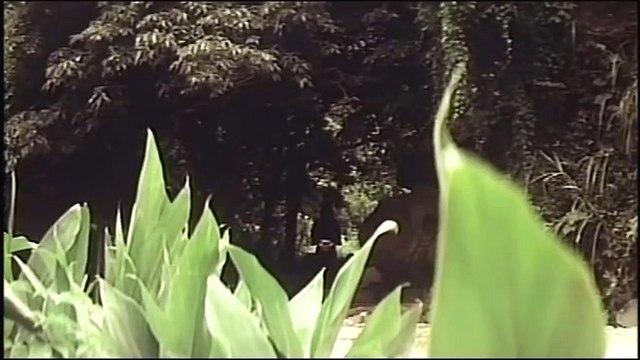 Wu Tang Collection - 18 Shaolin Riders (Mandarin with English Subtitles) part 2/2