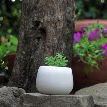 A Minimalist Approach DIY Seed Starter