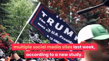 Election Misinformation Drops Over 70 Percent After Social Media
