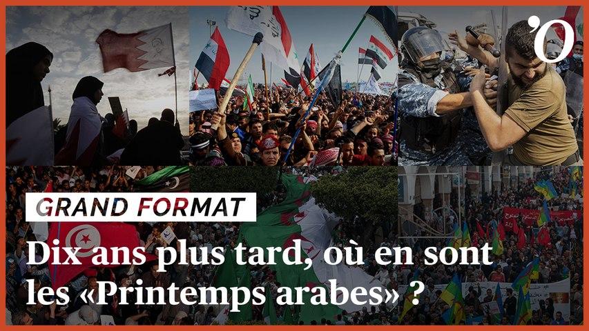 Algérie, Egypte, Syrie... les Arabes peuvent-ils se débarrasser de leurs régimes autoritaires ?