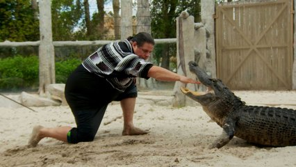 The Seminole Tribe Perfected Alligator Wrestling