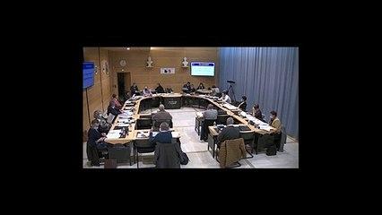 Vidéo du conseil municipal du 25 janvier 2021 (partie 2/2)
