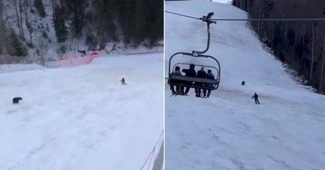 Urso persegue esquiador em descida numa estância de ski na Roménia