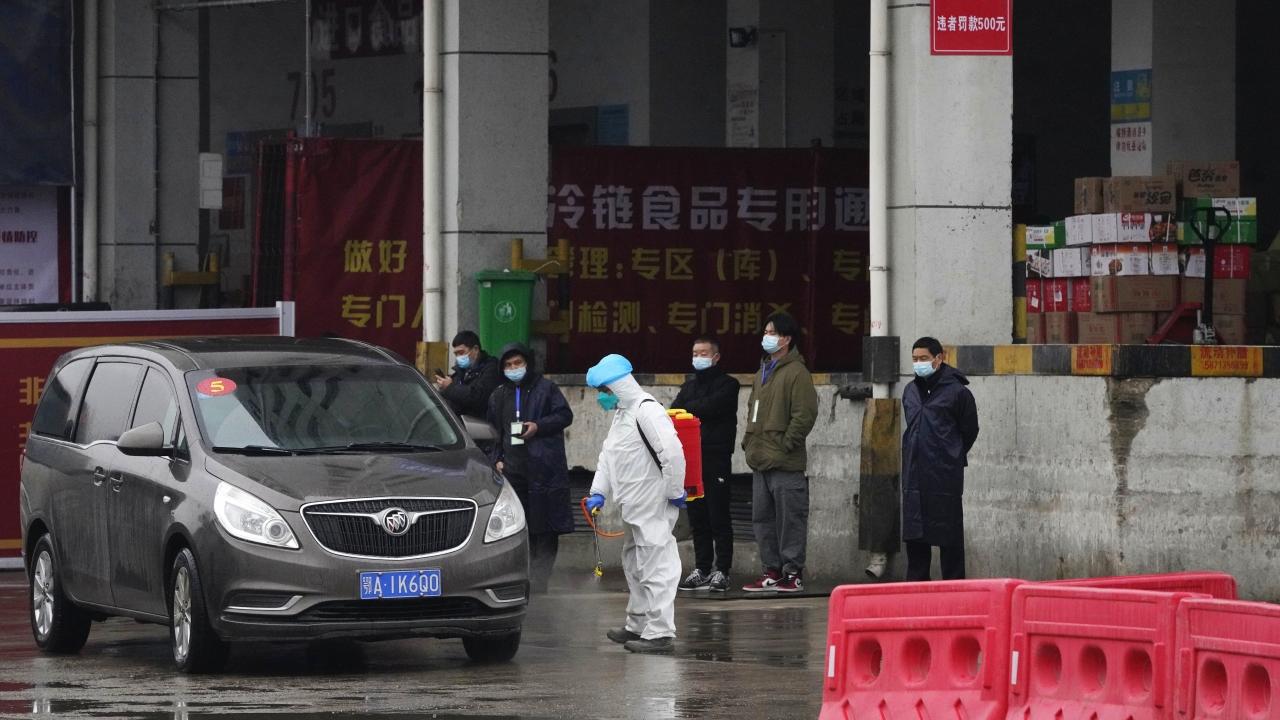 WHO Visits Wuhan Market To Investigate Origins Of Coronavirus