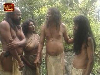 Wana Wadulehi Wasanthaya | Episode 05 - (2021-02-01)