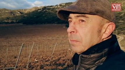"""Sylvain Fadat : """"Pour vendre ma cuvée 100% carignan, je devais rester discret sur sa composition"""""""
