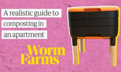 Composting in an apartment? Worm farming