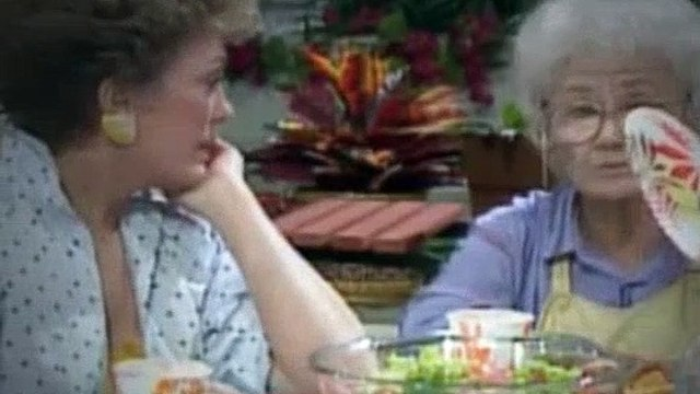 The Golden Girls Season 1 Episode 23 Blind Ambitions