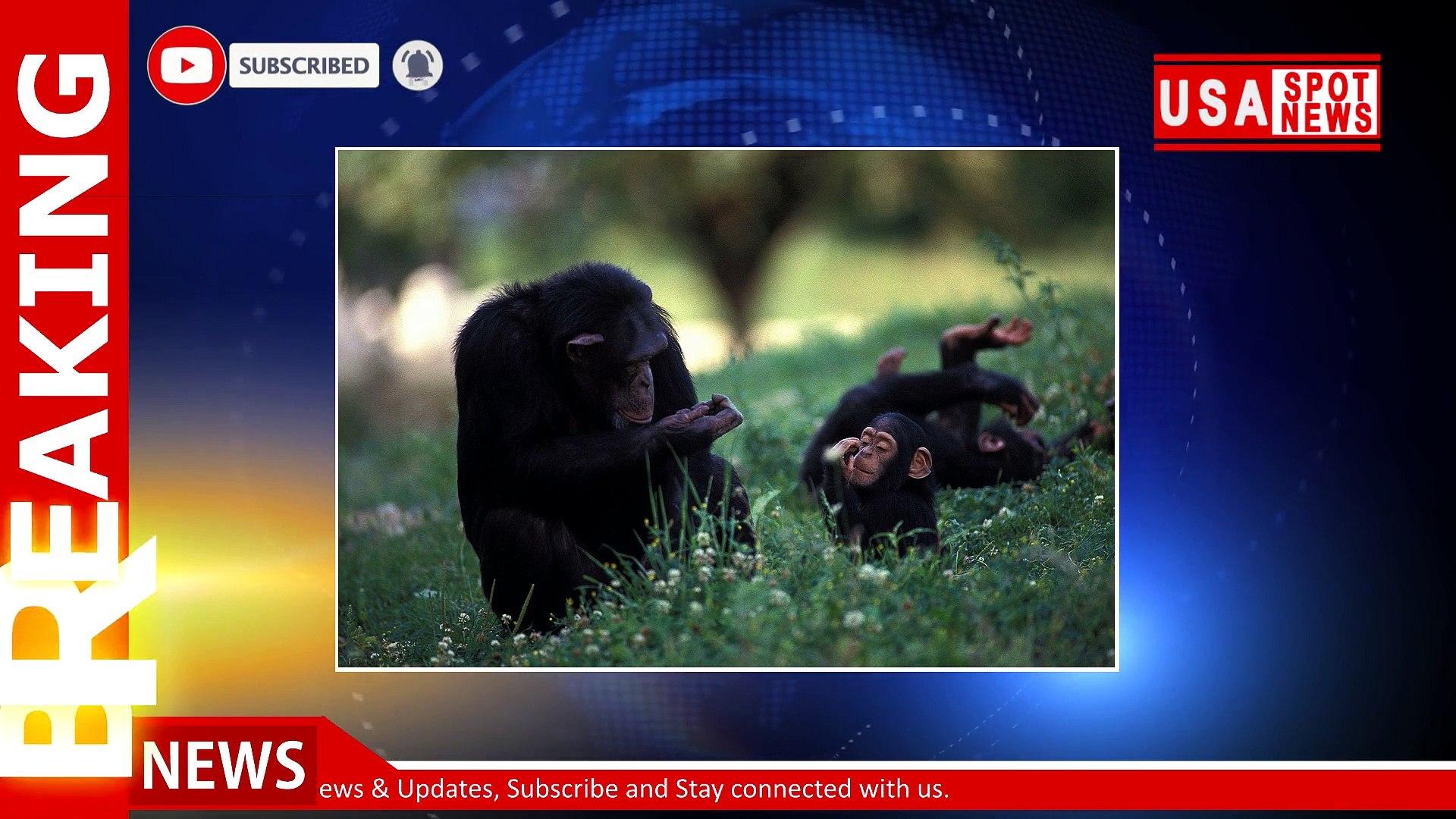 04 Feb 2021 | Morning News Headlines | Breaking News | News Today | USA Spot News
