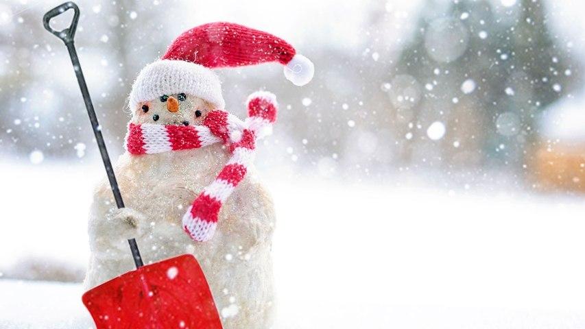 Marauding motorist takes down snowman in bizarre 'hit and run'