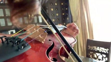 Nee paartha paarvaikkoru nanri -  Violin Cover - Kavya Ajit - Ruthin Thej - Vidhyasagar Venkatesan