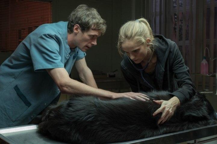 Una veterinaria en la Borgoña - Trailer español