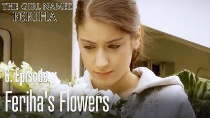 Feriha's flowers - The Girl Named Feriha Episode 6