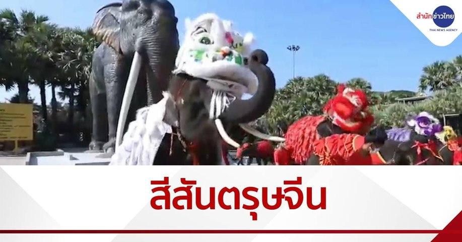 สีสันตรุษจีน ช้างเชิดสิงโต